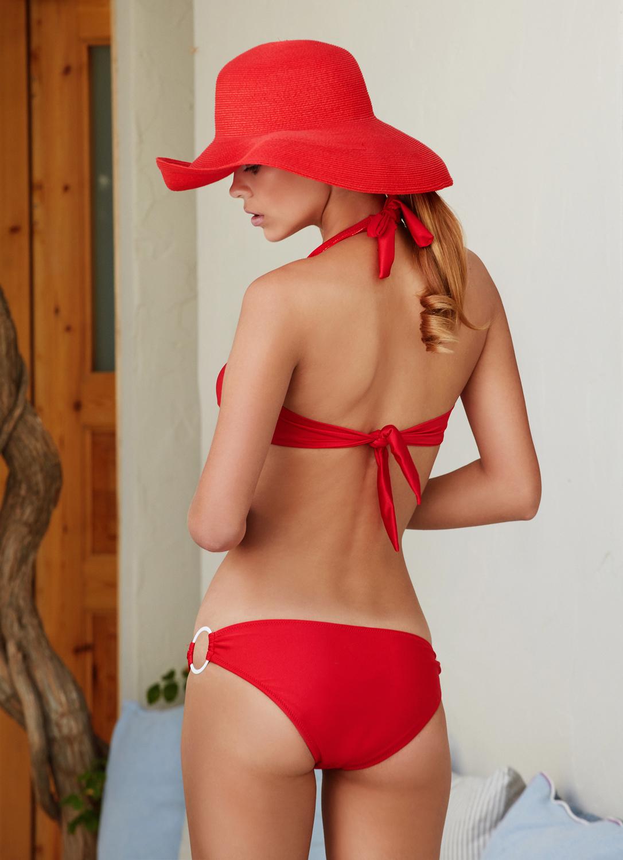 curves-red-bikini-antmarkant